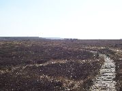 Picture of the path to Spitlers Edge