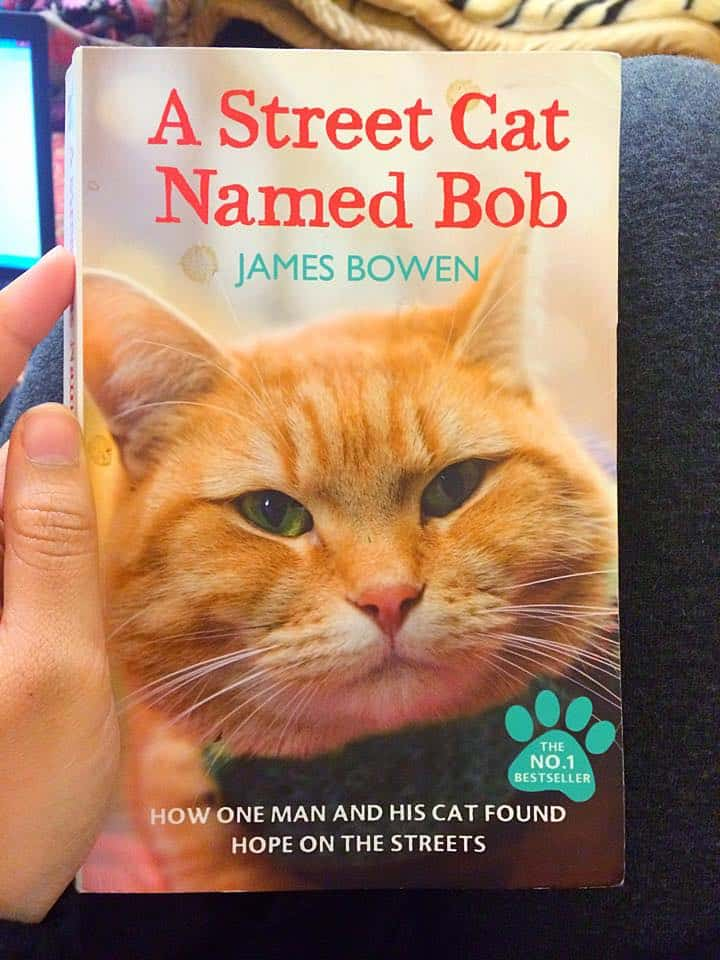 Read this month - A Street Cat Named Bob by James Bowen