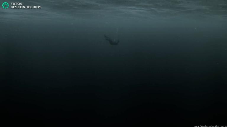 7 curiosidades perturbadoras sobre o afogamento