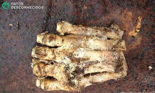 Fragmento de membro encontrado com cinco dedos gerou boatos sobre existência do 'pé-grande' (Foto: Lakeville Police Department/AFP)