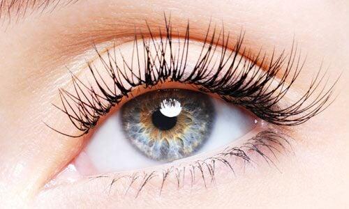 Você sabe qual é o significado da cor dos seus olhos?