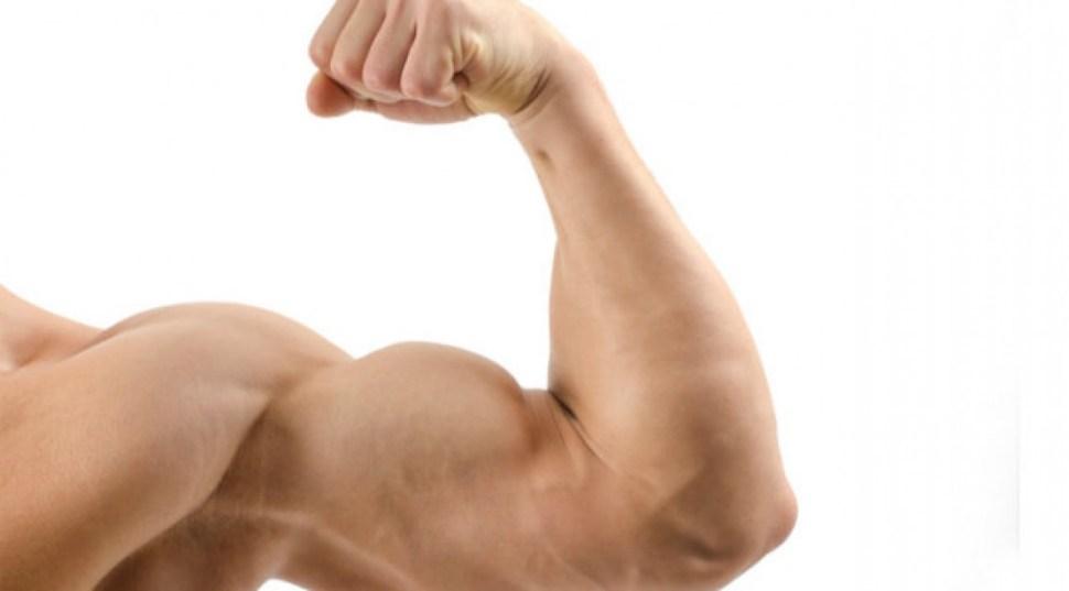 treino-de-biceps-hipertrofia