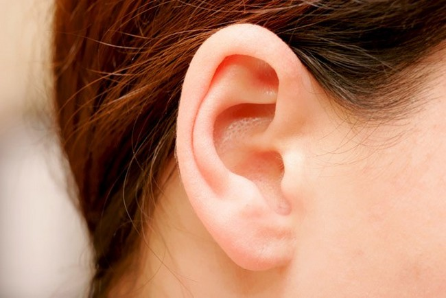 orelhas