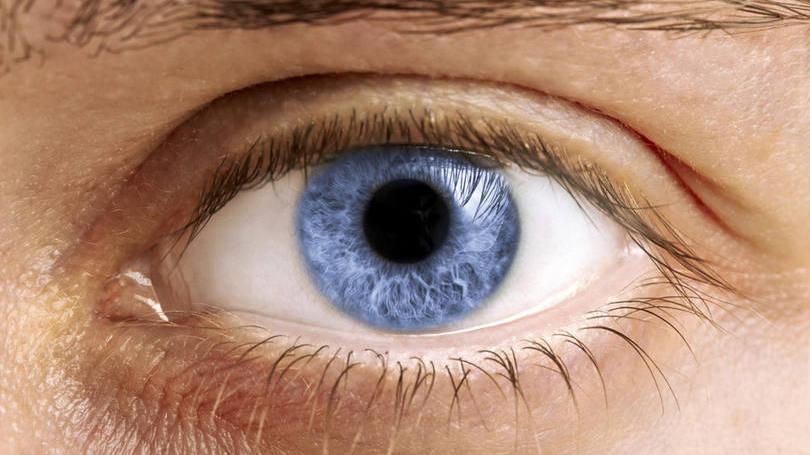 size_810_16_9_olhos