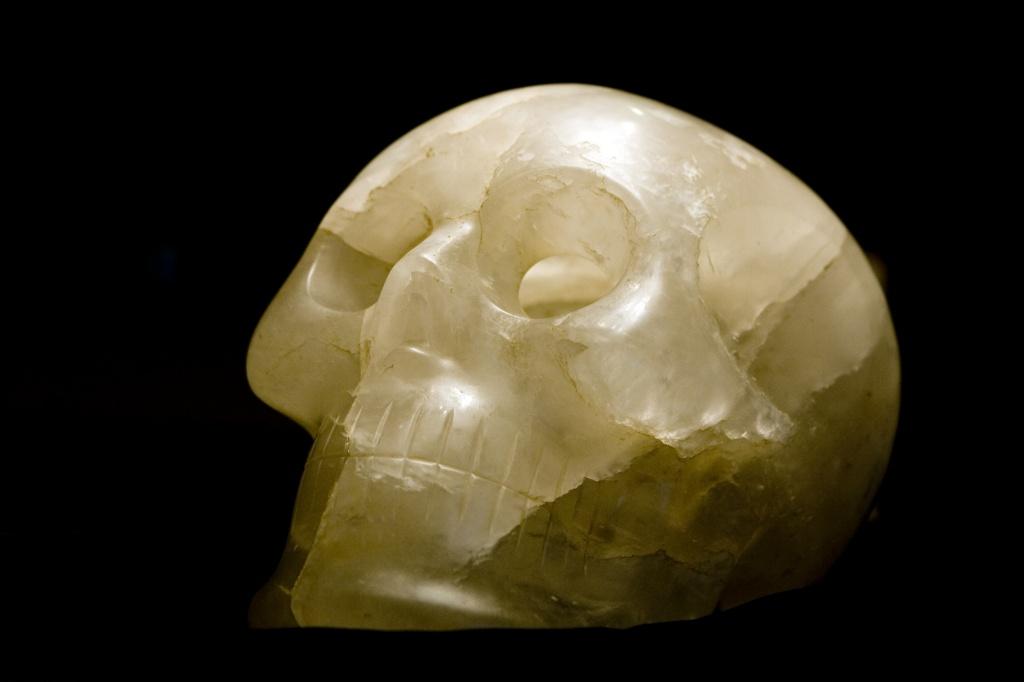 Slug: ST/Skull Date: 07.09.2008 Kevin Clark/TWP Neg #: 20251