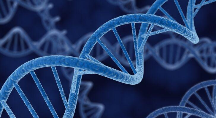 Será que você tem? Cientistas descobrem evidência genética da homossexualidade