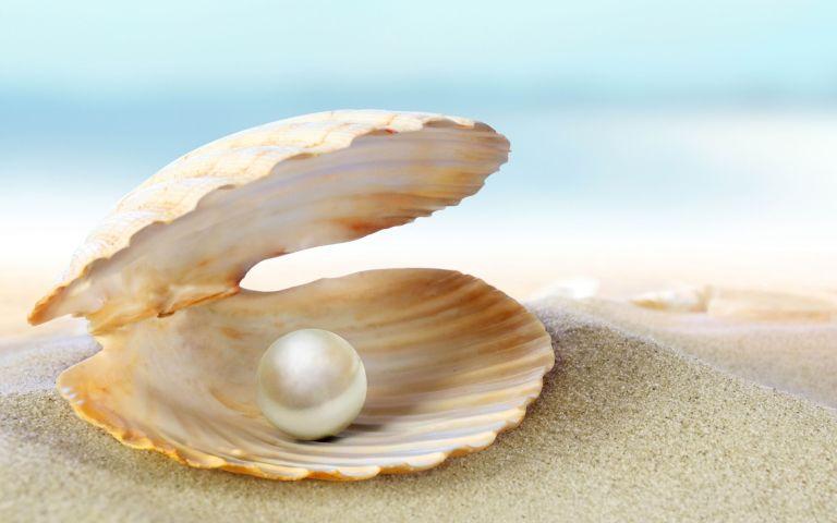 Mulher vai abrir uma ostra em busca de uma pérola e tem a maior surpresa de sua vida
