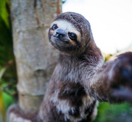 selfie-08
