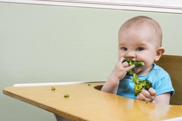 bebe-comendo-brocolis-foto-red-peppershutterstockcom-0000000000016712