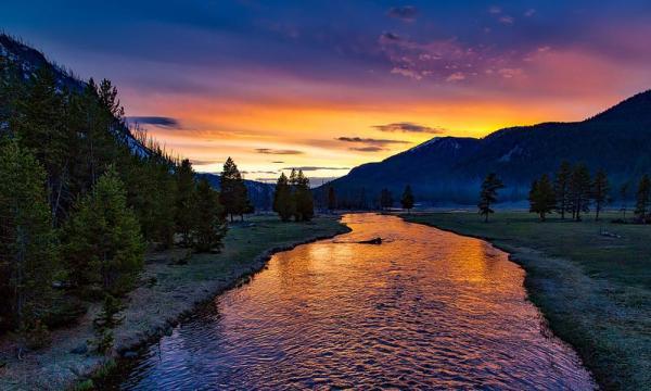 YellowstoneParkSons INTERNA 600x360, Fatos Desconhecidos