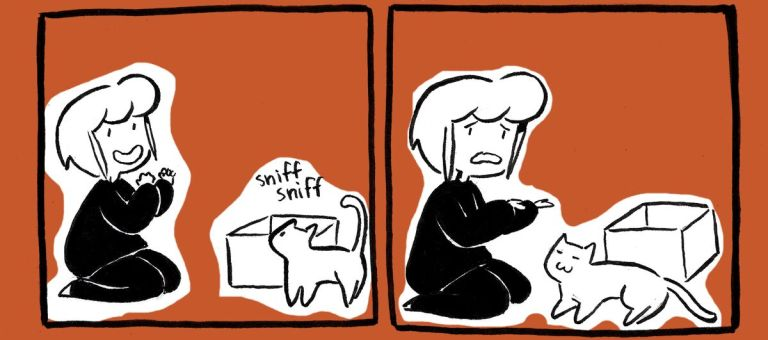 17 ilustrações que retratam perfeitamente como é a vida com gatos