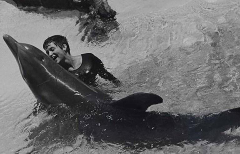 Conheça a bizarra história de amor entre uma mulher e um golfinho