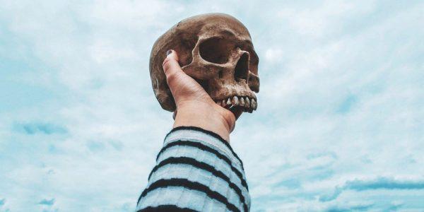 A Course In Dying Skull Deathdreams Vliegenbos Banner 033 1000x500 600x300, Fatos Desconhecidos