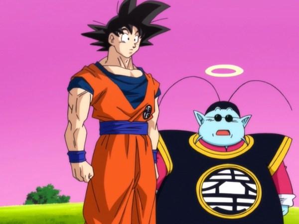 Goku And King Kai Battle Of Gods 600x450, Fatos Desconhecidos