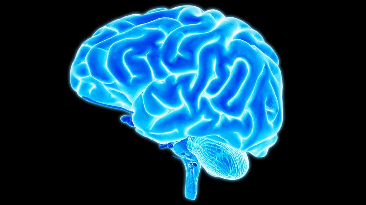 Brain.ngsversion.1398176967716, Fatos Desconhecidos