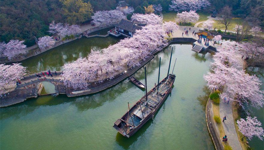 A primavera na China provavelmente vai ser a coisa mais bonita que você vai ver hoje
