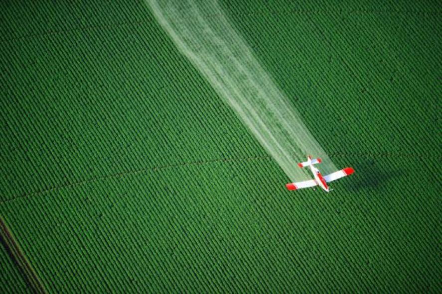 Pesticide, Fatos Desconhecidos
