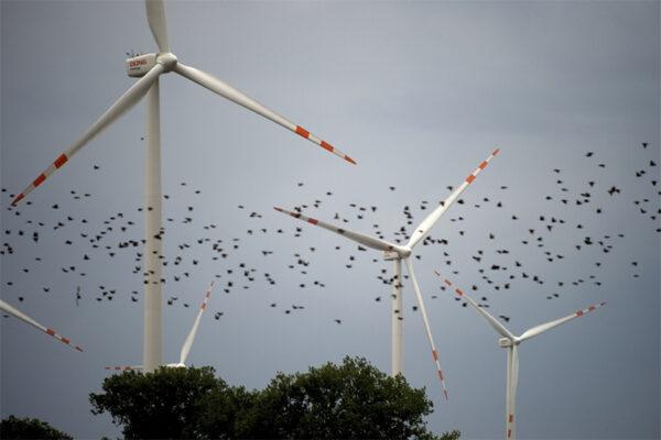 Energia Eólica4 600x400, Fatos Desconhecidos