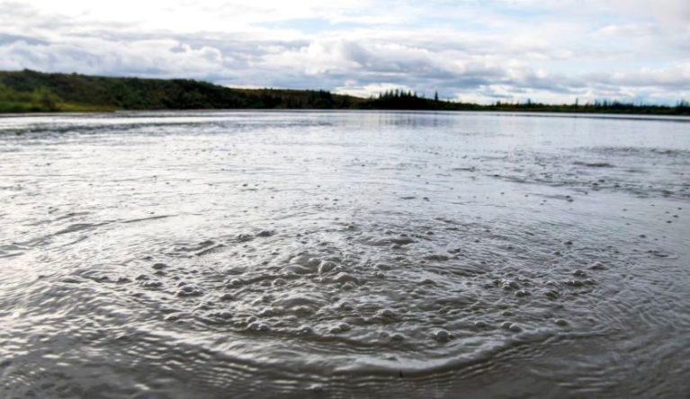 Lago fervente do Alasca mostra consequências das mudanças climáticas