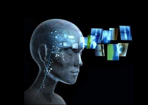 Cerebro, Fatos Desconhecidos
