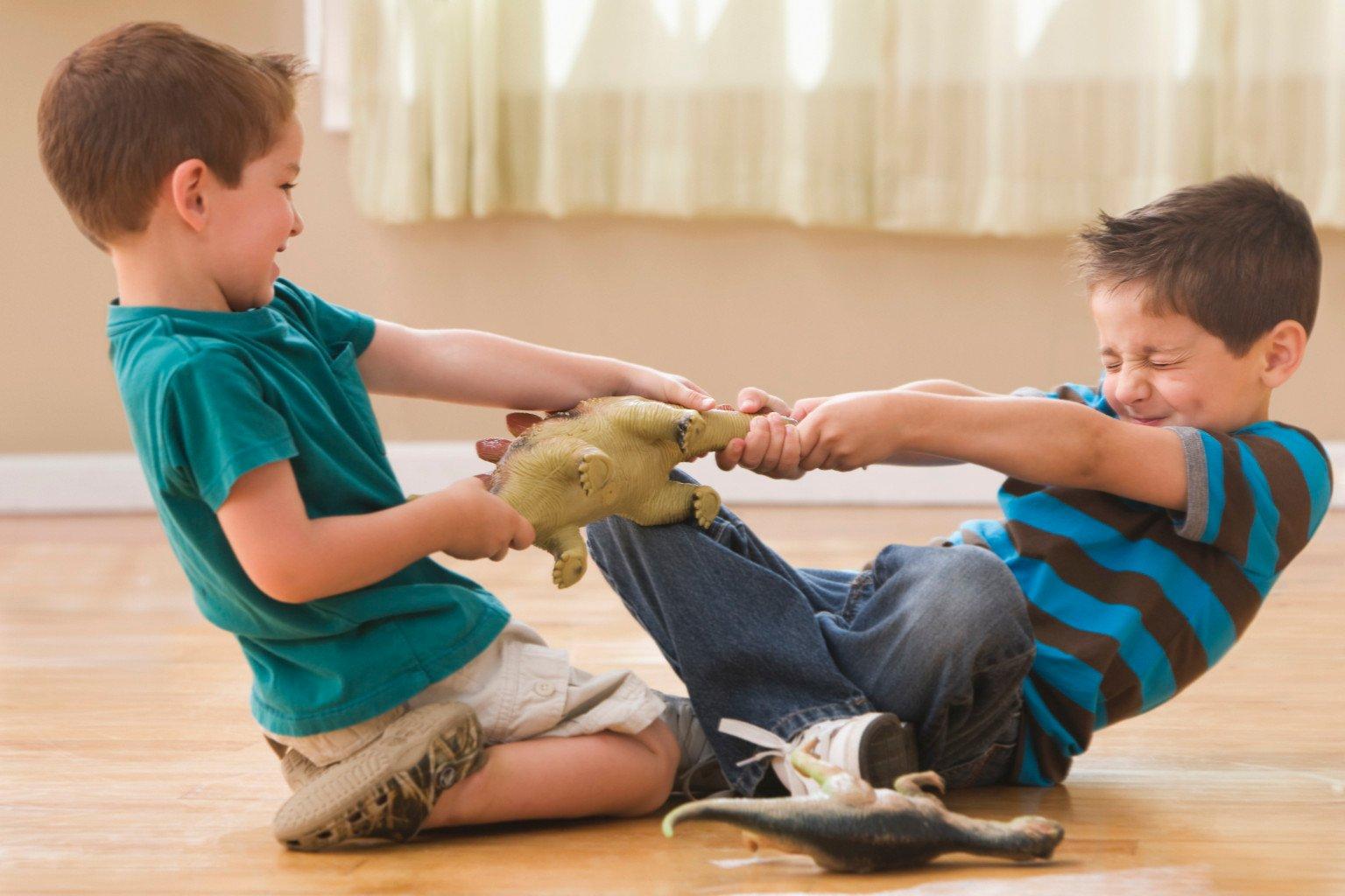 Estudo diz que briga entre irmãos faz bem para saúde