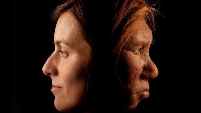 Os primeiros humanos e os neandertais se relacionavam mais do que imaginávamos