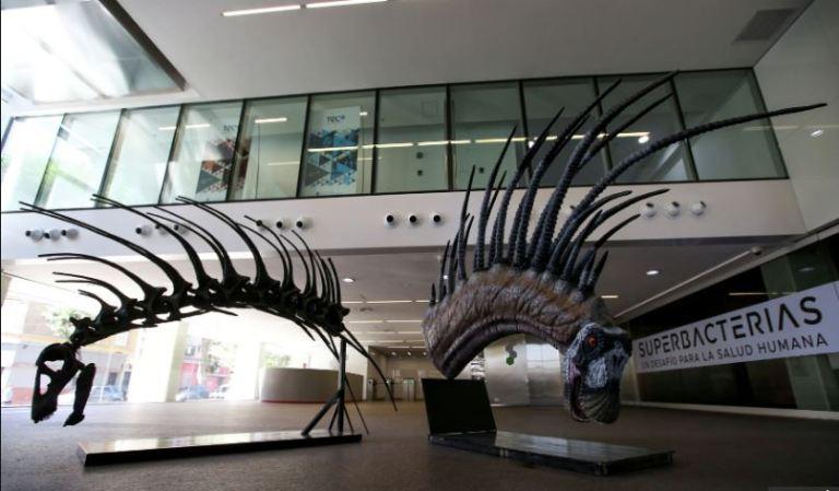 """Incrível dinossauro com """"moicano"""" foi descoberto na Patagônia"""