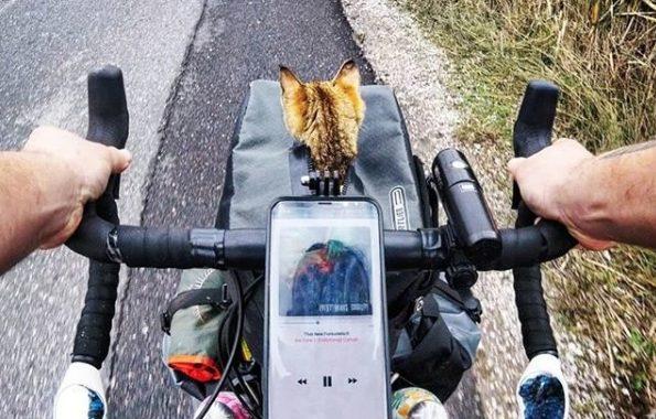 Escocês resolveu viajar de bicicleta pelo mundo sozinho até encontrar companheira felina