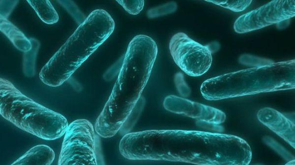 151119040550 Antibiotics Resistance Bacteria 640x360  Nocredit 600x337, Fatos Desconhecidos