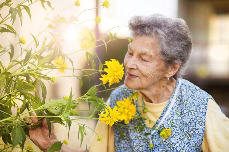 Sentir deficiência no olfato pode indicar morte, entenda