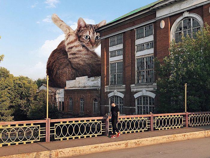 15 imagens que mostram como seria o mundo se os gatos fossem gigantes