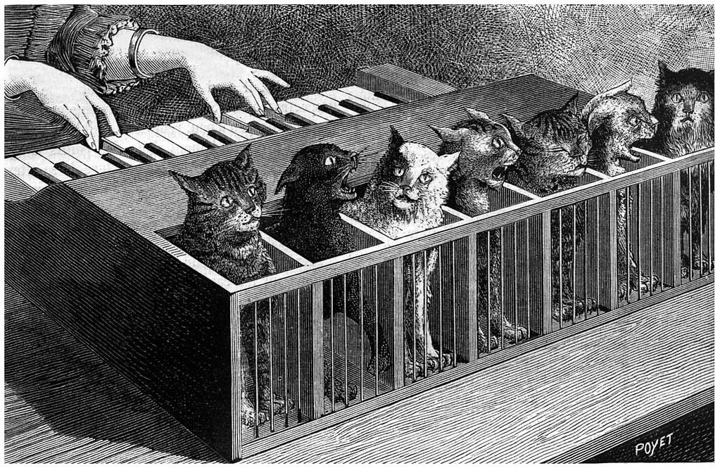 Coisas Totalmente Insanas Que Ja Fizemos Com Gatos 2, Fatos Desconhecidos
