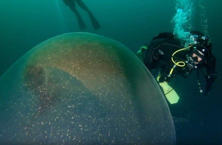 O que seria essa enorme esfera gelatinosa encontrada por mergulhadores?