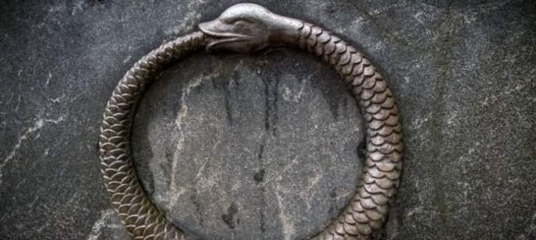O que acontece quando uma cobra tenta se comer?