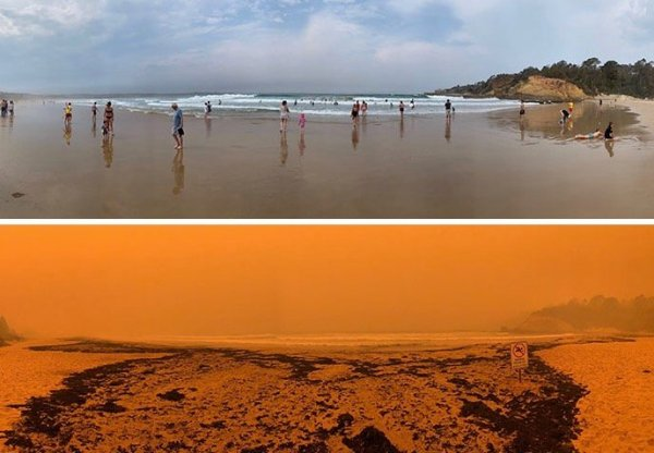 Praia Tathra 600x416, Fatos Desconhecidos