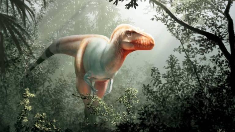 Conheça o novo tiranossauro recém descoberto