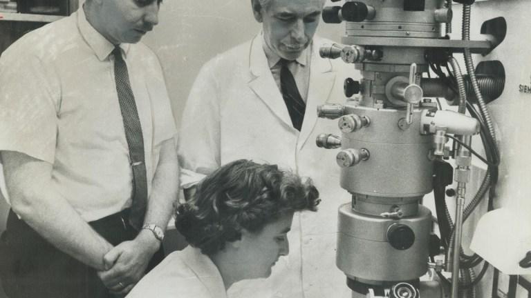 Conheça a cientista June Almeida, responsável por identificar o primeiro coronavírus humano