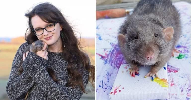 Veja as obras de arte feitas por ratos