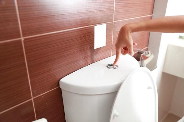 Conheça os riscos de dar descarga com a tampa do vaso sanitário aberta