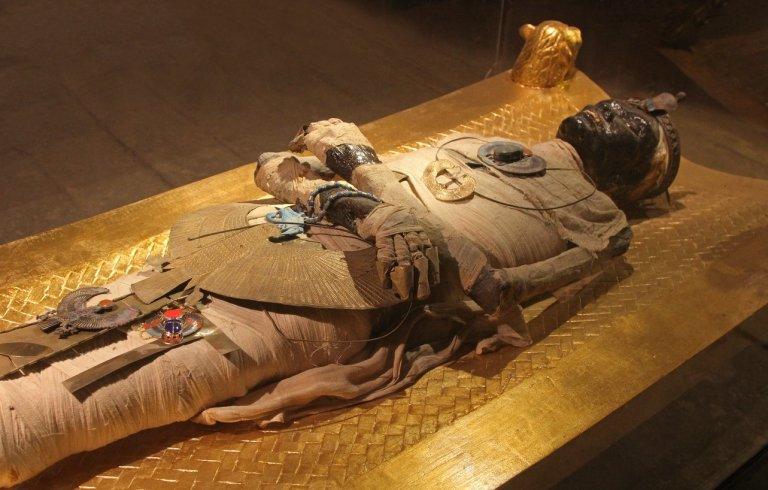 Pesquisadores descobrem, após tomografia, que múmias encontradas não são humanas
