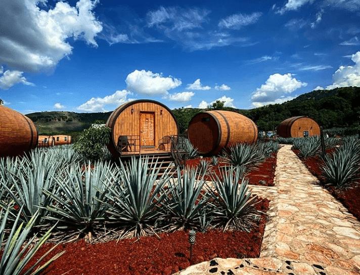 No México, é possível dormir dentro de um barril e beber tequila direto da fonte