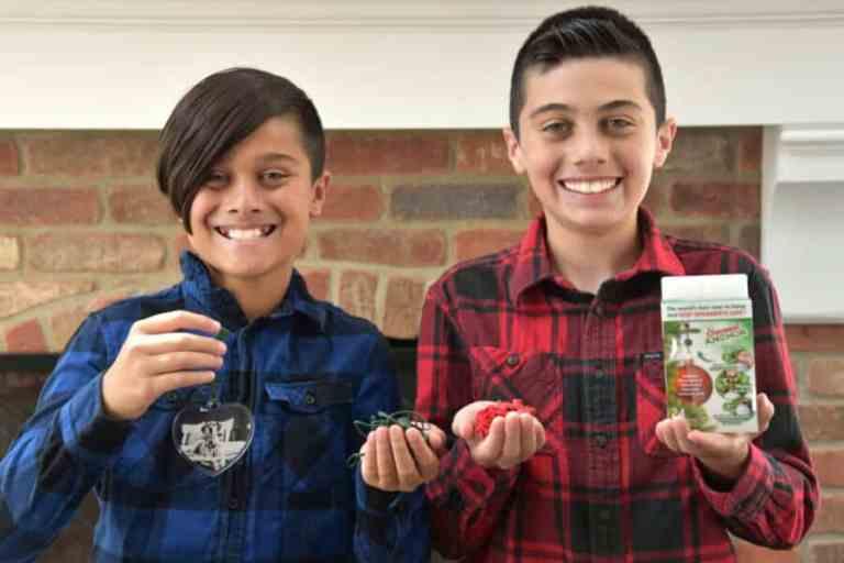 Irmãos ganham US$ 250.000 com invenção natalina