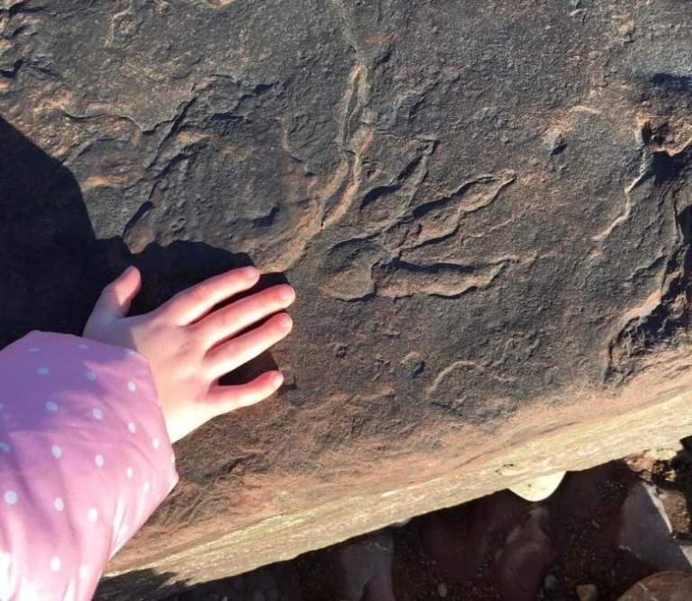 Criança de quatro anos descobriu uma pegada de dinossauro de 200 milhões de anos