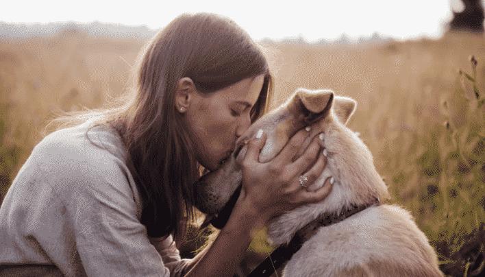 Ciência confirma que os cachorros podem sim sentir a emoção dos donos