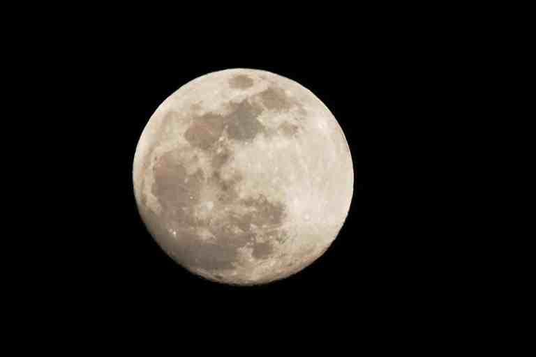 Cientistas sugerem uma criação de peixes na lua