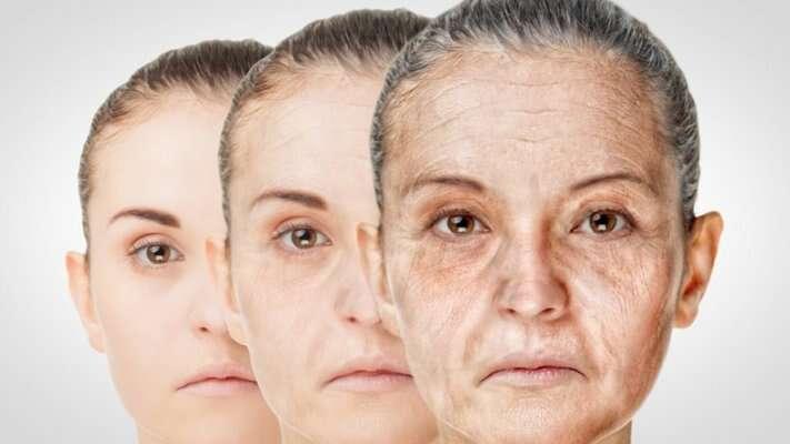 Nosso corpo envelhece em três turnos diferentes, como apontam mais de 4 mil exames de sangue