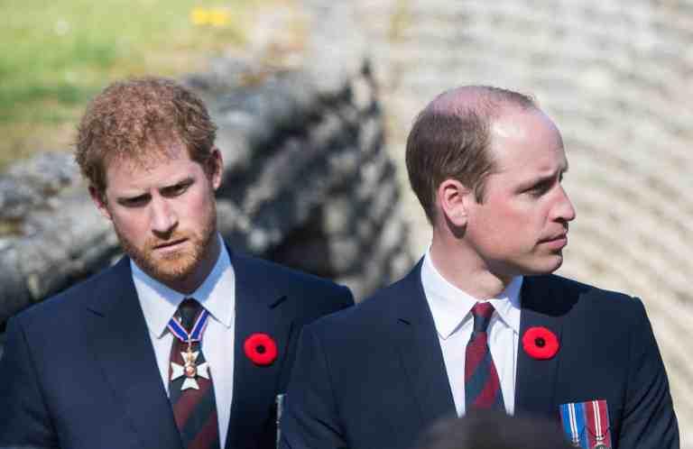 Especialista em leitura labial revela o que os príncipes William e Harry disseram um para o outro no funeral do avô