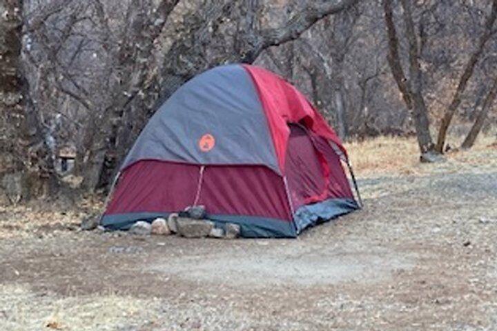Autoridades encontram mulher desaparecida vivendo em barraca