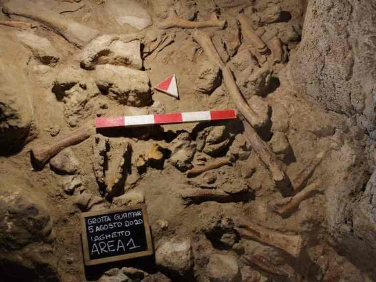 Pesquisadores encontram fósseis de nove neandertais em uma caverna no sul de Roma