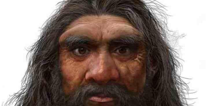 Esse pode ser o ancestral mais próximo do ser humano e não é o neandertal